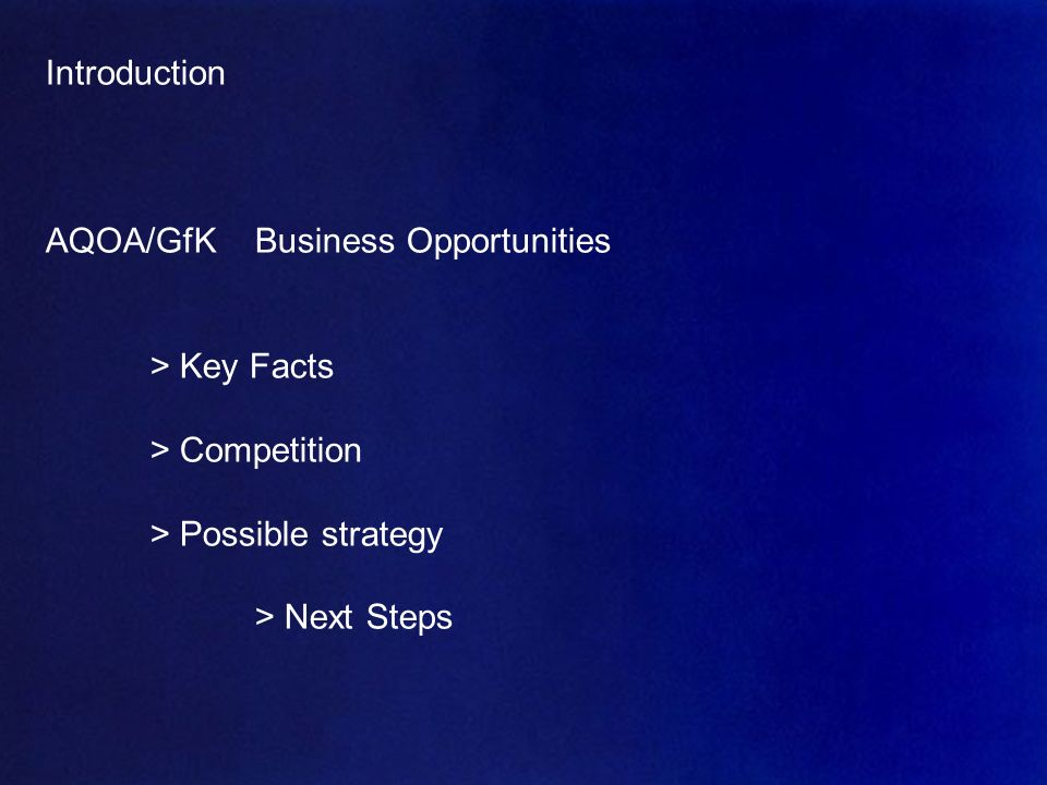 AQOA – Mai 2007 18 Introduction AQOA/GfKBusiness Opportunities > Key Facts > Competition > Possible strategy > Next Steps