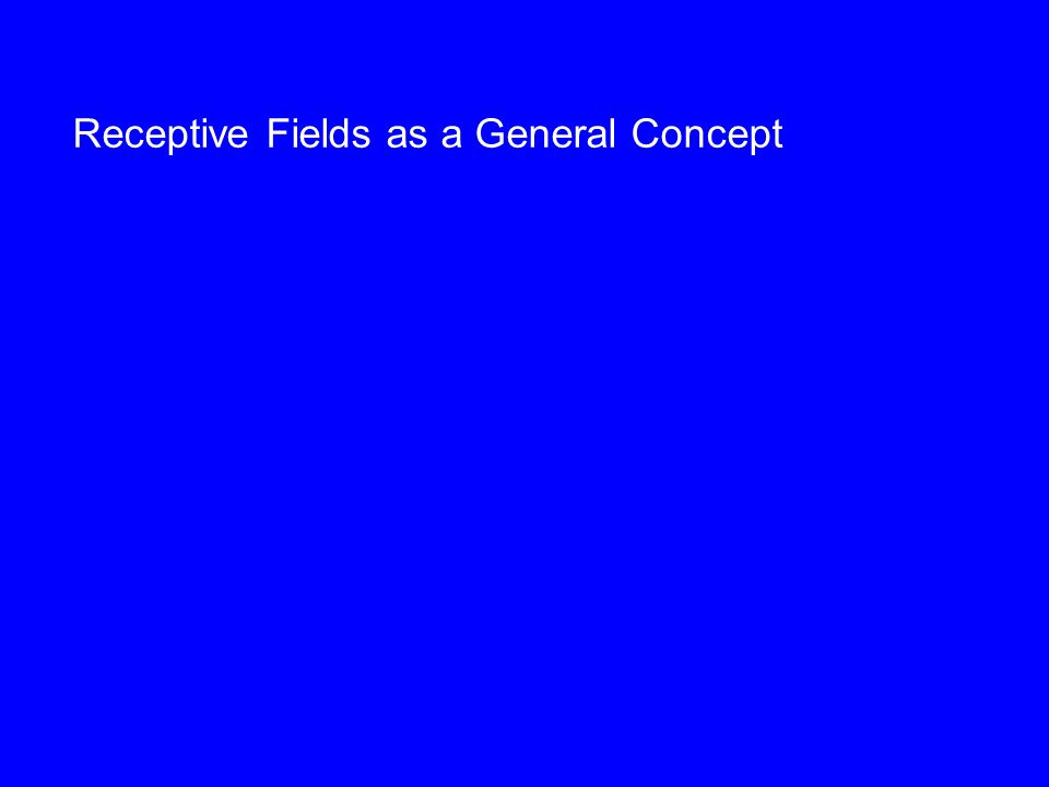 Receptive Fields as a General Concept