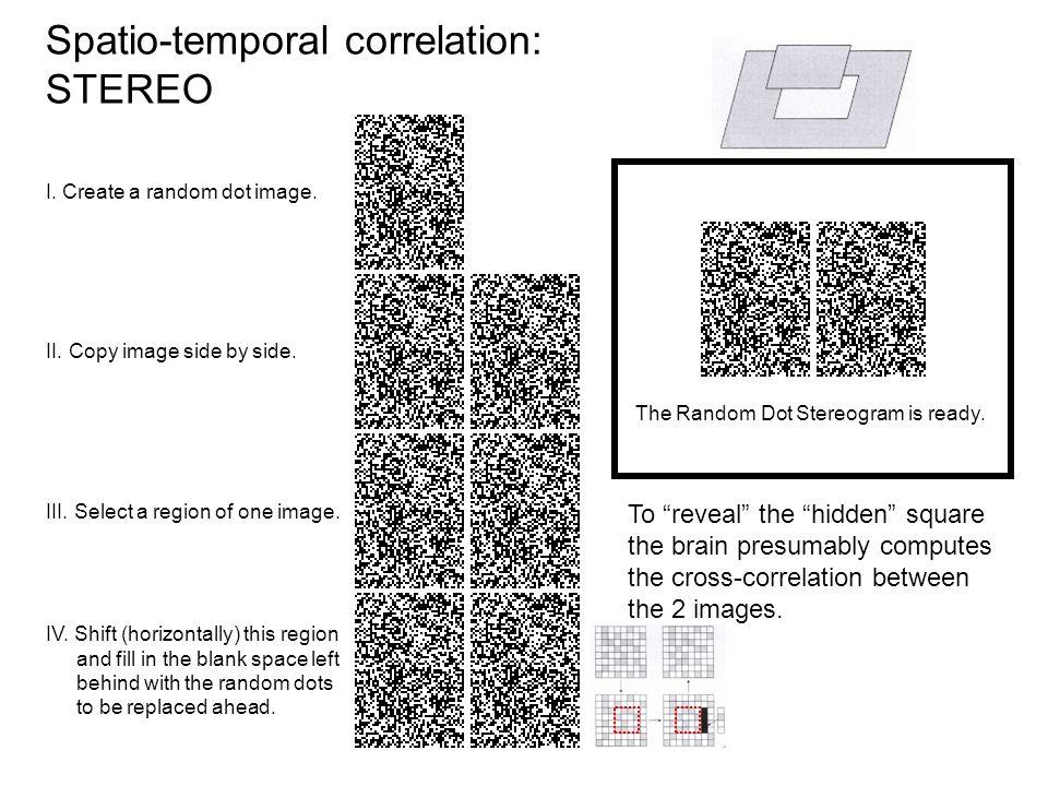 I. Create a random dot image. II. Copy image side by side.