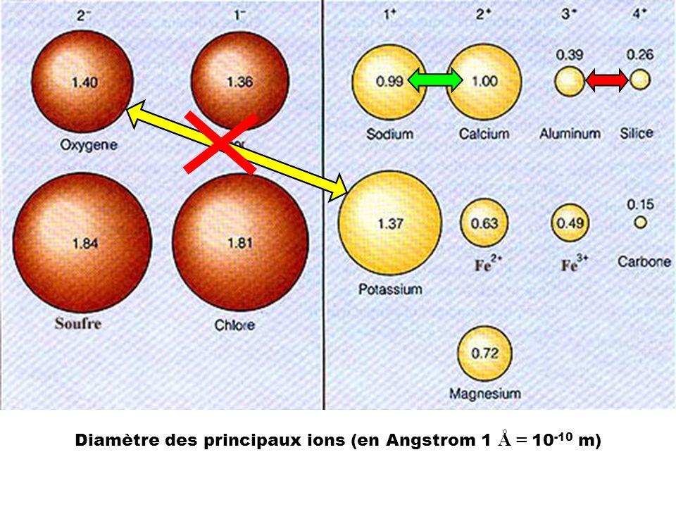 Diamètre des principaux ions (en Angstrom 1 Å = 10 -10 m)