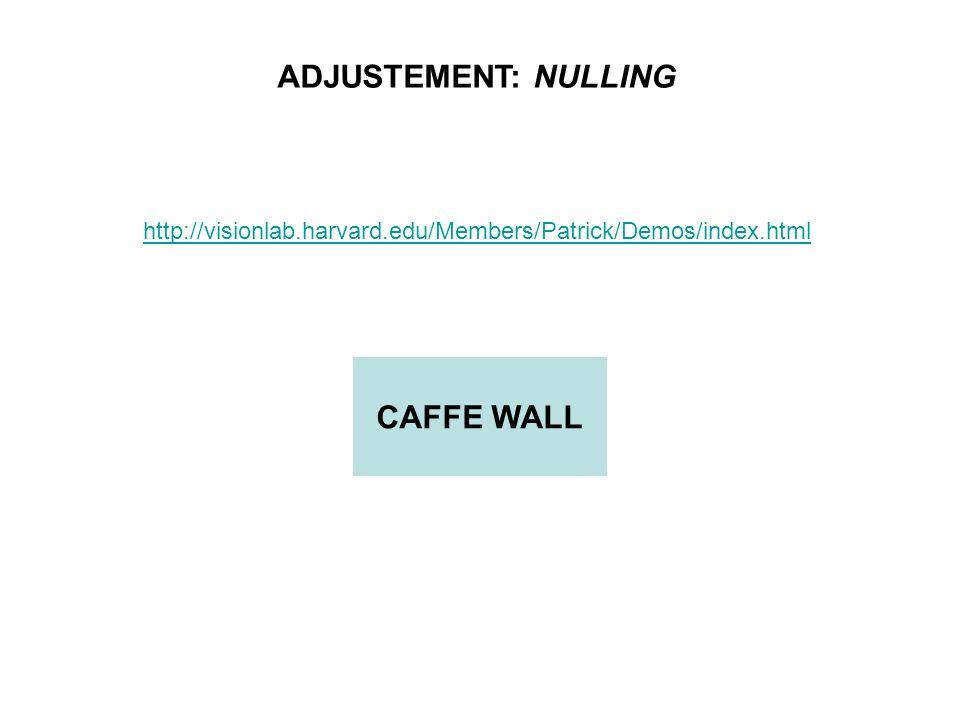 http://visionlab.harvard.edu/Members/Patrick/Demos/index.html ADJUSTEMENT: NULLING CAFFE WALL