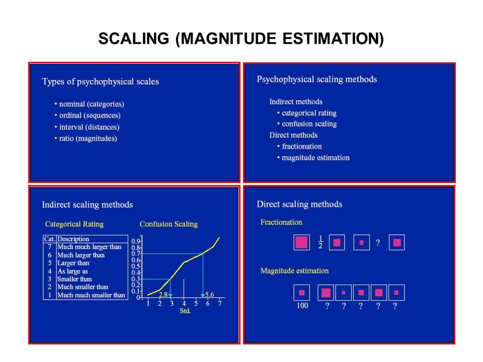 SCALING (MAGNITUDE ESTIMATION)