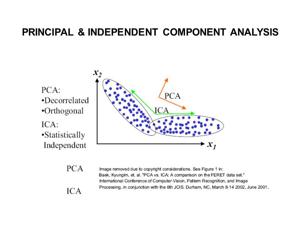 PRINCIPAL & INDEPENDENT COMPONENT ANALYSIS