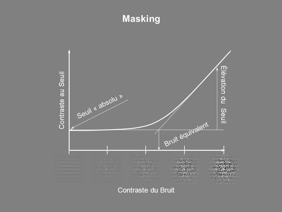 Contraste au Seuil Contraste du Bruit Élévation du Seuil Bruit équivalent Masking Seuil « absolu »