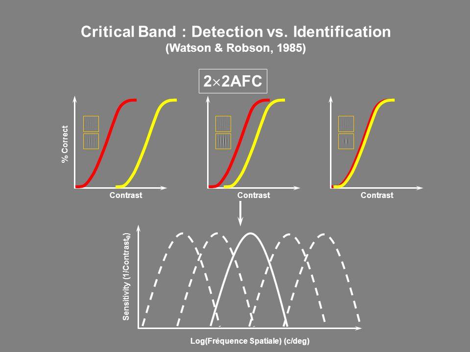 Critical Band : Detection vs. Identification (Watson & Robson, 1985) % Correct Contrast Log(Fréquence Spatiale) (c/deg) Sensitivity (1/Contrast ) 2 2A