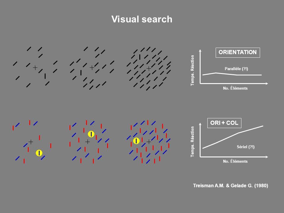 Temps. Réaction No. Éléments ORIENTATION Parallèle (?!) Temps. Réaction No. Éléments Sériel (?!) ORI + COL Treisman A.M. & Gelade G. (1980) Visual sea