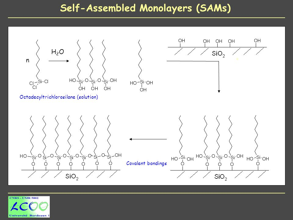 n H2OH2O + Covalent bondings Octadecyltrichlorosilane (solution)
