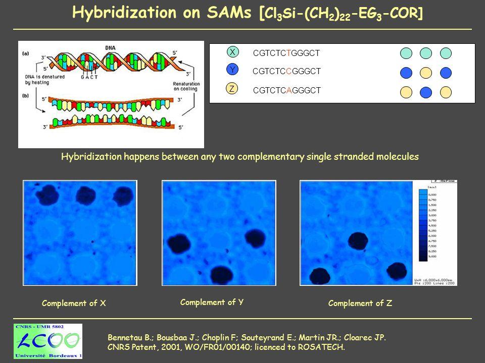 Hybridization on SAMs [ Cl 3 Si-(CH 2 ) 22 -EG 3 -COR] Bennetau B.; Bousbaa J.; Choplin F; Souteyrand E.; Martin JR.; Cloarec JP.