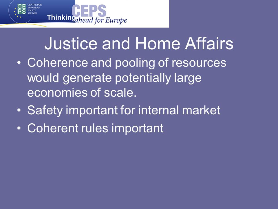 Justice and Home Affairs Coherence and pooling of resources would generate potentially large economies of scale.