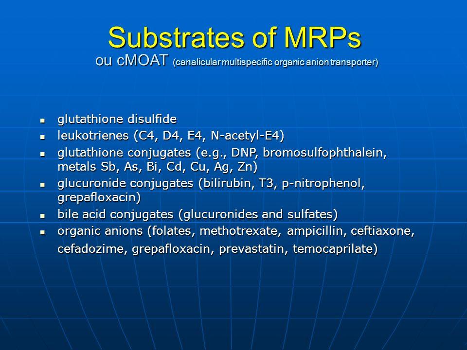Substrates of MRPs ou cMOAT (canalicular multispecific organic anion transporter) glutathione disulfide glutathione disulfide leukotrienes (C4, D4, E4, N-acetyl-E4) leukotrienes (C4, D4, E4, N-acetyl-E4) glutathione conjugates (e.g., DNP, bromosulfophthalein, metals Sb, As, Bi, Cd, Cu, Ag, Zn) glutathione conjugates (e.g., DNP, bromosulfophthalein, metals Sb, As, Bi, Cd, Cu, Ag, Zn) glucuronide conjugates (bilirubin, T3, p-nitrophenol, grepafloxacin) glucuronide conjugates (bilirubin, T3, p-nitrophenol, grepafloxacin) bile acid conjugates (glucuronides and sulfates) bile acid conjugates (glucuronides and sulfates) organic anions (folates, methotrexate, ampicillin, ceftiaxone, cefadozime, grepafloxacin, prevastatin, temocaprilate) organic anions (folates, methotrexate, ampicillin, ceftiaxone, cefadozime, grepafloxacin, prevastatin, temocaprilate)