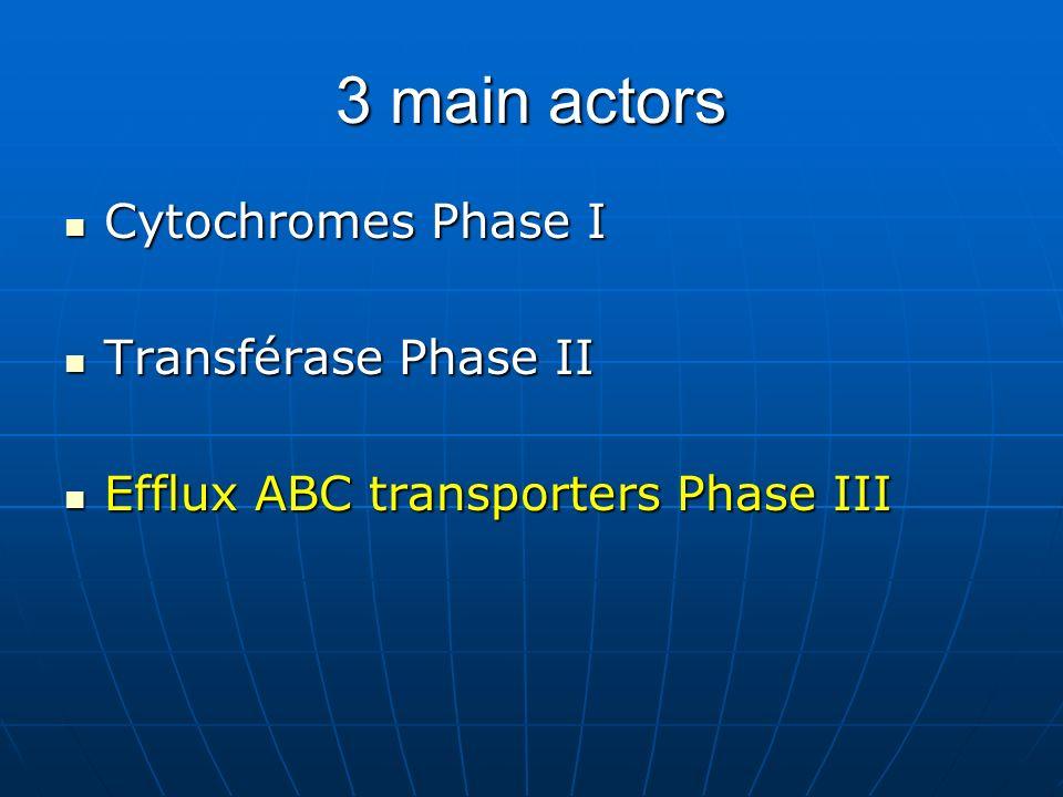 3 main actors Cytochromes Phase I Cytochromes Phase I Transférase Phase II Transférase Phase II Efflux ABC transporters Phase III Efflux ABC transporters Phase III