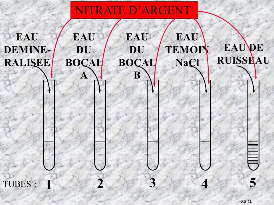 TUBES : 1 5 4 3 2 EAU DU BOCAL A EAU DE RUISSEAU EAU DU BOCAL B EAU TEMOIN NaCl EAU DEMINE- RALISEE NITRATE DARGENT F.B-M.