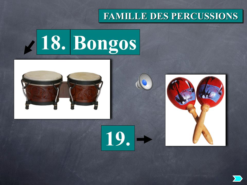 18. 19. Bongos FAMILLE DES PERCUSSIONS
