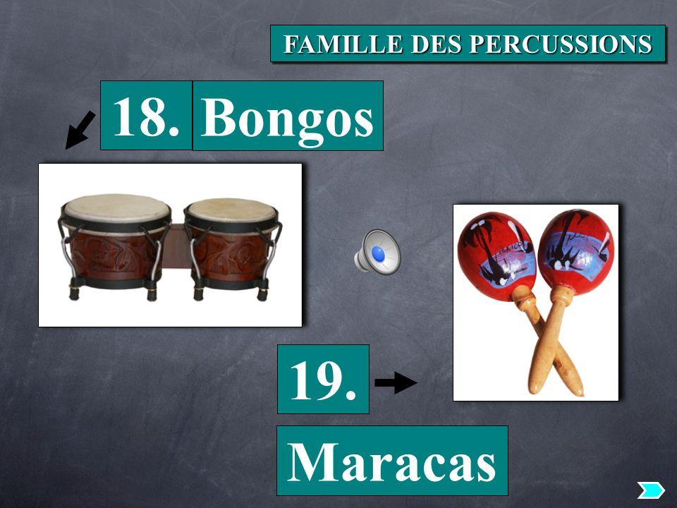 18. 19. Bongos Maracas FAMILLE DES PERCUSSIONS