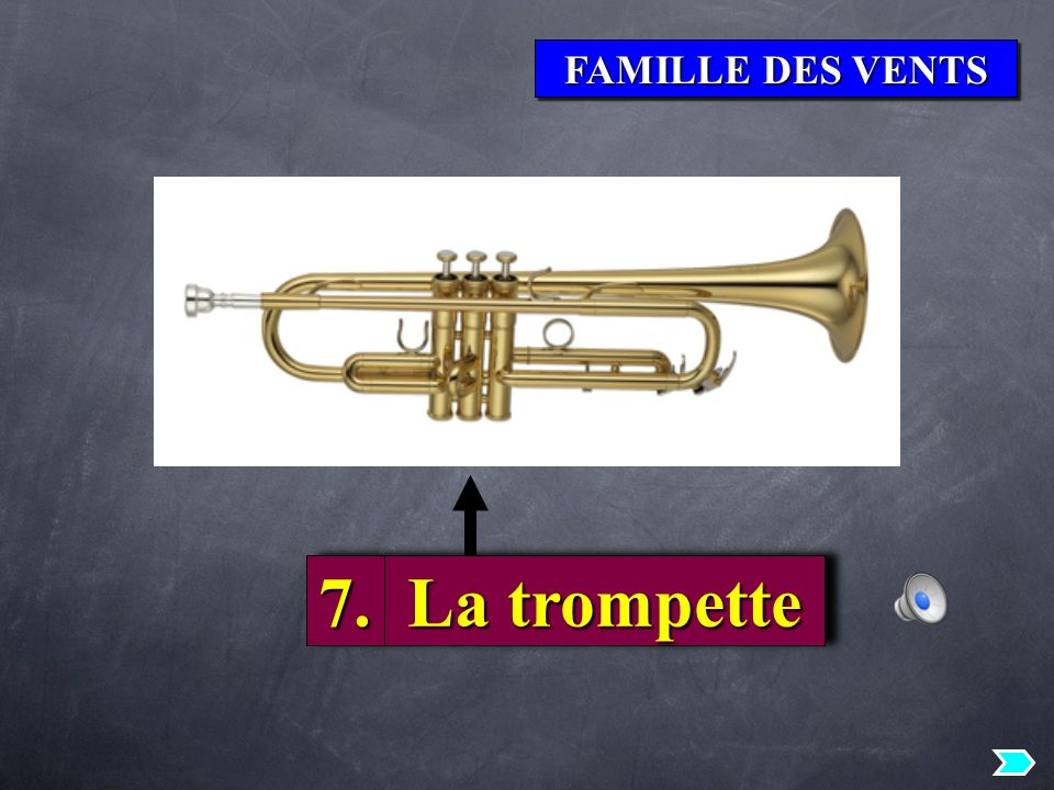 FAMILLE DES VENTS 7.7. La trompette