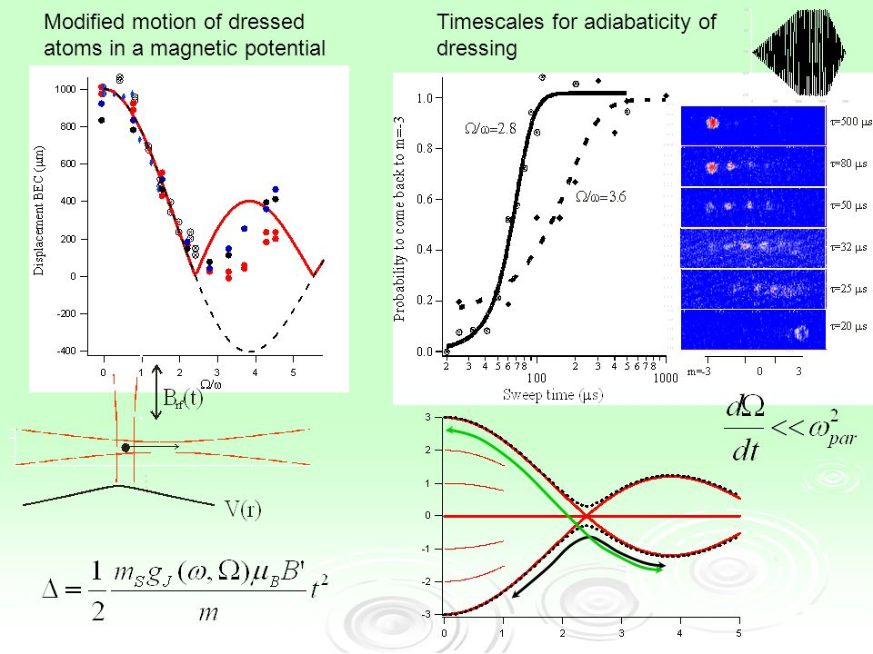 Modified motion of dressed atoms in a magnetic potential Timescales for adiabaticity of dressing
