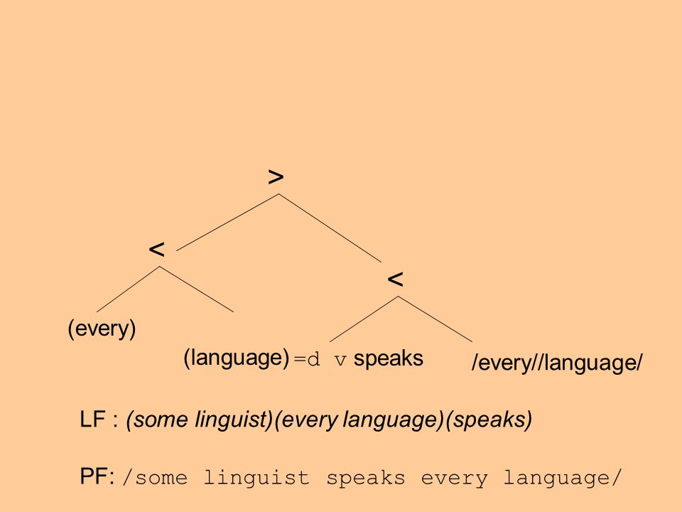 (every) (language) < =d v speaks < > /every//language/ LF : (some linguist)(every language)(speaks) PF: /some linguist speaks every language/