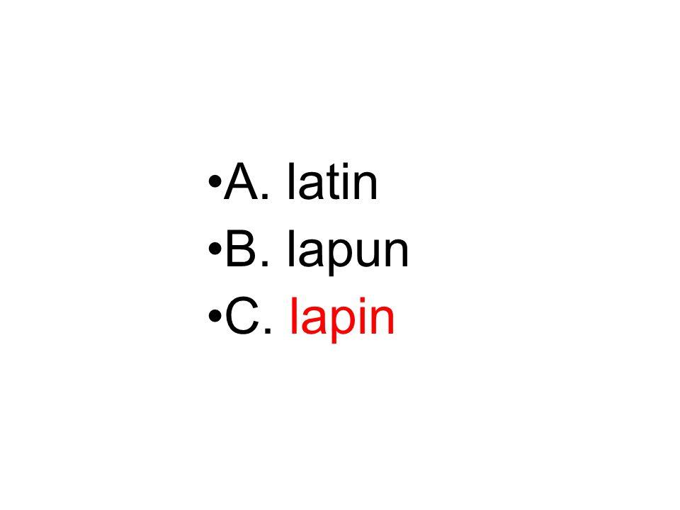A. latin B. lapun C. lapin