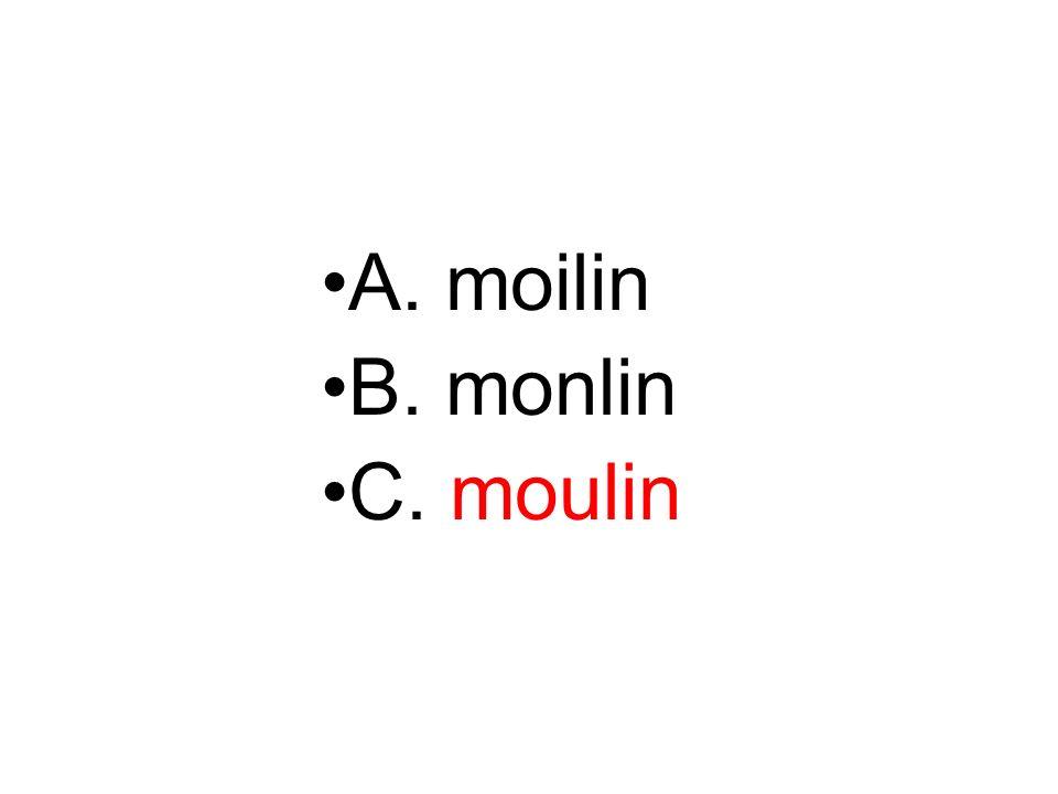 A. moilin B. monlin C. moulin