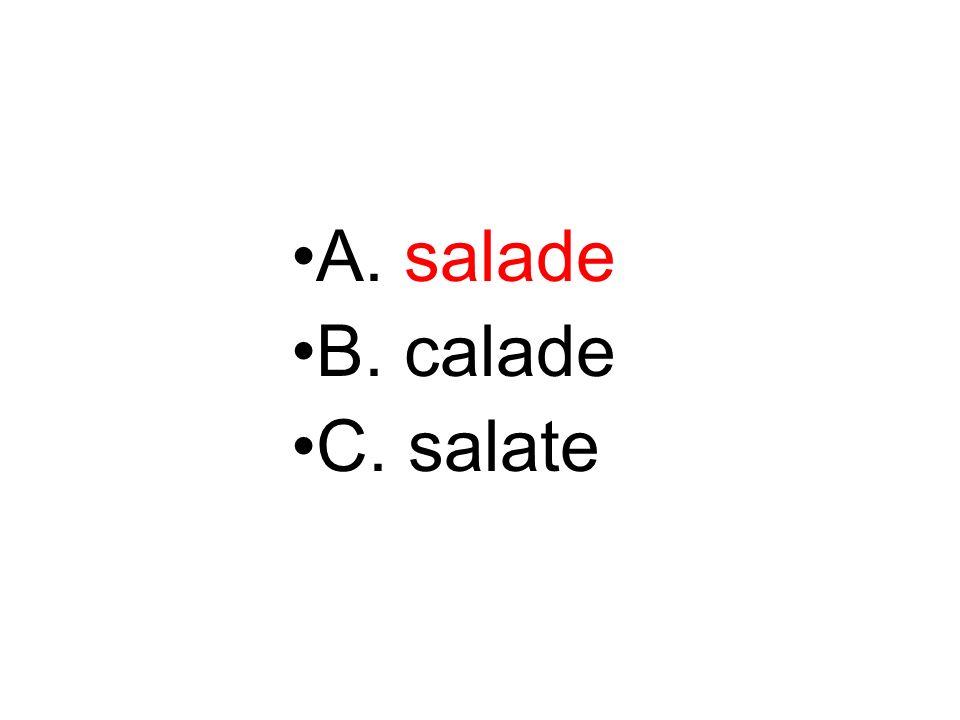 A. salade B. calade C. salate