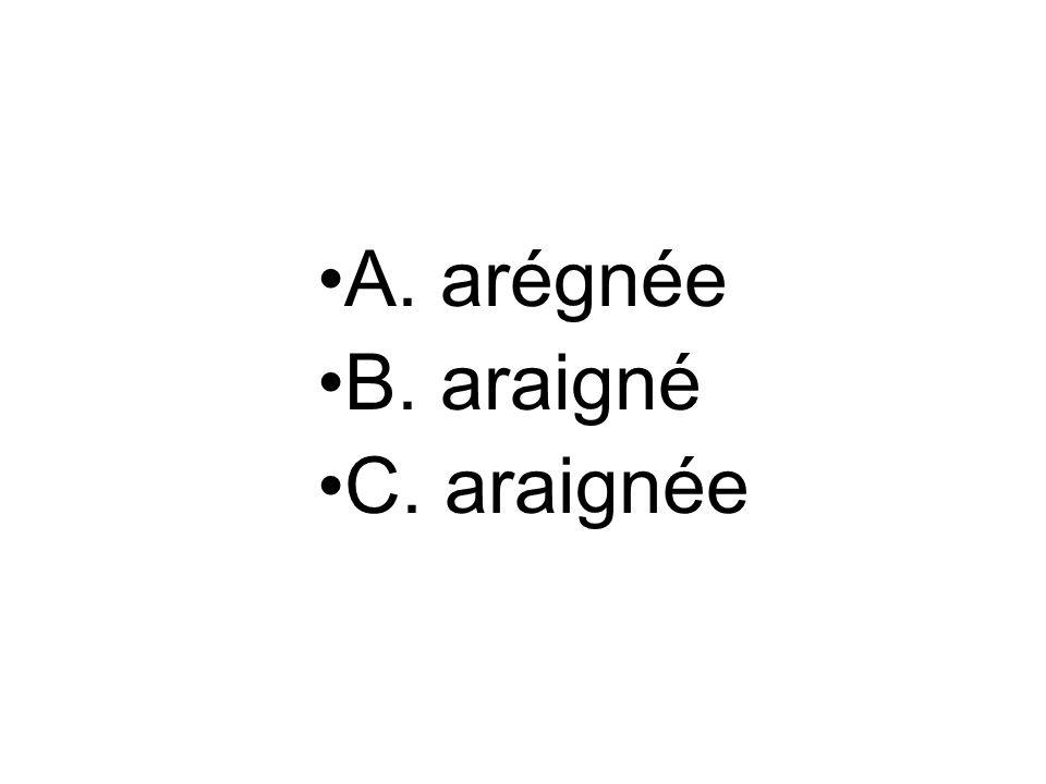 A. arégnée B. araigné C. araignée
