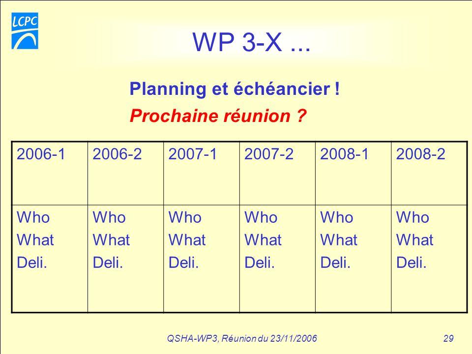 QSHA-WP3, Réunion du 23/11/200629 WP 3-X... 2006-12006-22007-12007-22008-12008-2 Who What Deli. Who What Deli. Who What Deli. Who What Deli. Who What