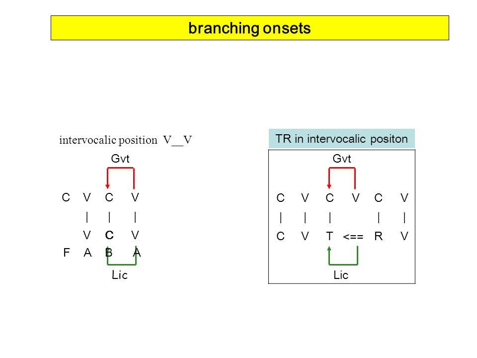 intervocalic position V__V CVCV ||| VCV Gvt Lic F A B A branching onsets CVC VC V |||| | CVTR V TR in intervocalic positon <== Lic Gvt
