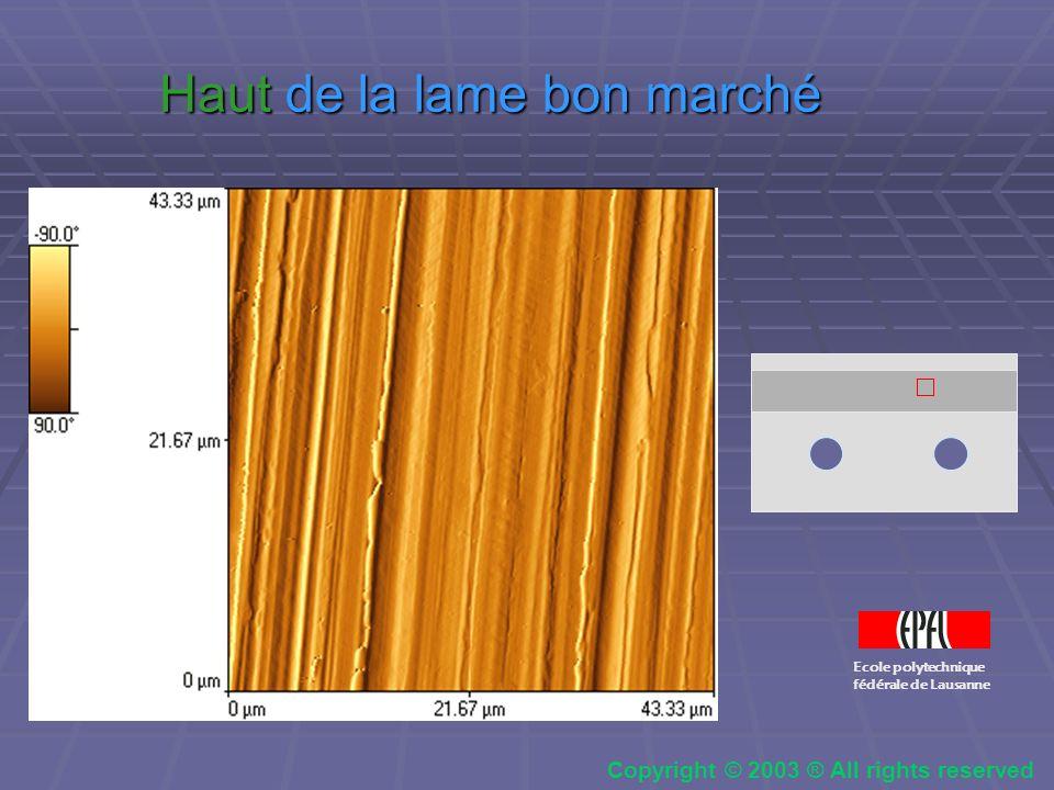 Zone de transition en haut de la lame Ecole polytechnique fédérale de Lausanne Copyright © 2003 ® All rights reserved