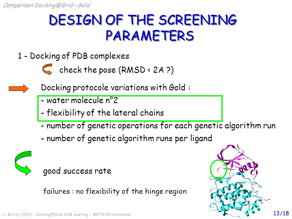 L. Brillet (CEA) – Docking@Grid ANR meeting – META08 Hammamet 13/18 DESIGN OF THE SCREENING PARAMETERS 1 - Docking of PDB complexes check the pose (RM