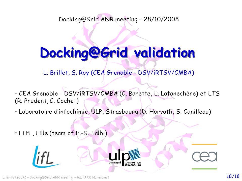 L. Brillet (CEA) – Docking@Grid ANR meeting – META08 Hammamet 18/18 Docking@Grid validation Docking@Grid ANR meeting - 28/10/2008 CEA Grenoble - DSV/i