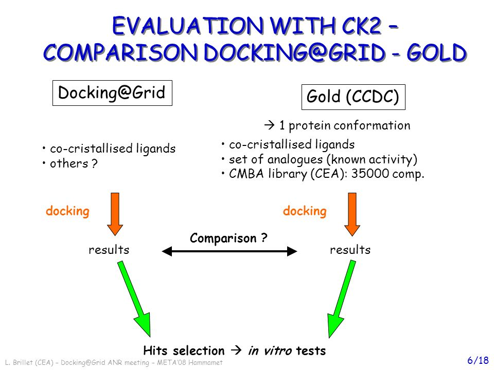 L. Brillet (CEA) – Docking@Grid ANR meeting – META08 Hammamet 6/18 EVALUATION WITH CK2 – COMPARISON DOCKING@GRID - GOLD EVALUATION WITH CK2 – COMPARIS
