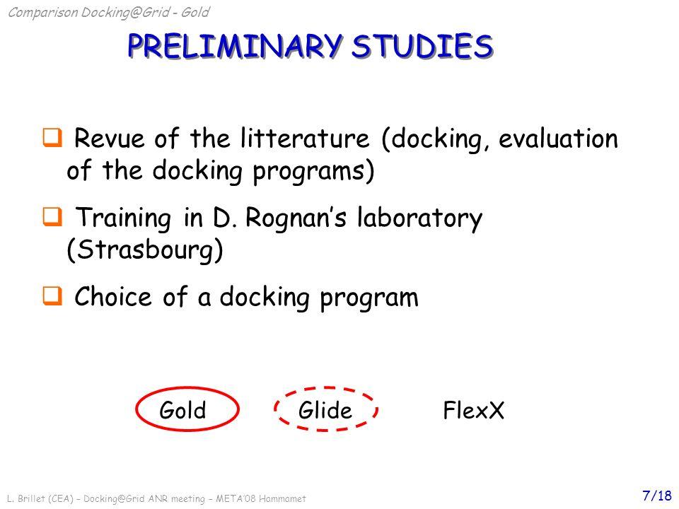 L. Brillet (CEA) – Docking@Grid ANR meeting – META08 Hammamet 7/18 GoldGlideFlexX PRELIMINARY STUDIES Comparison Docking@Grid - Gold Revue of the litt