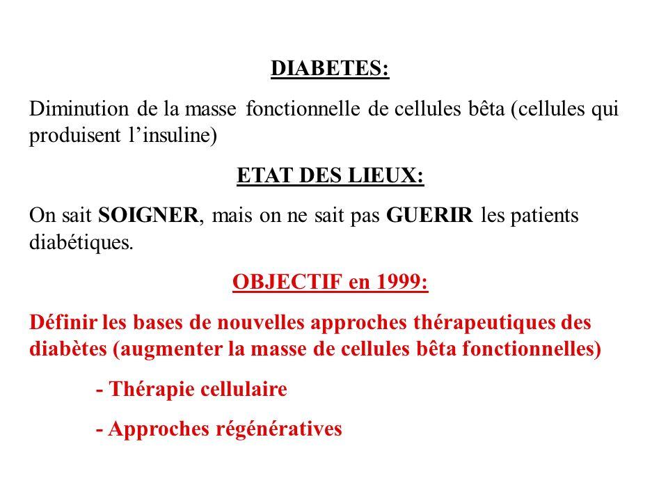 DIABETES: Diminution de la masse fonctionnelle de cellules bêta (cellules qui produisent linsuline) ETAT DES LIEUX: On sait SOIGNER, mais on ne sait pas GUERIR les patients diabétiques.
