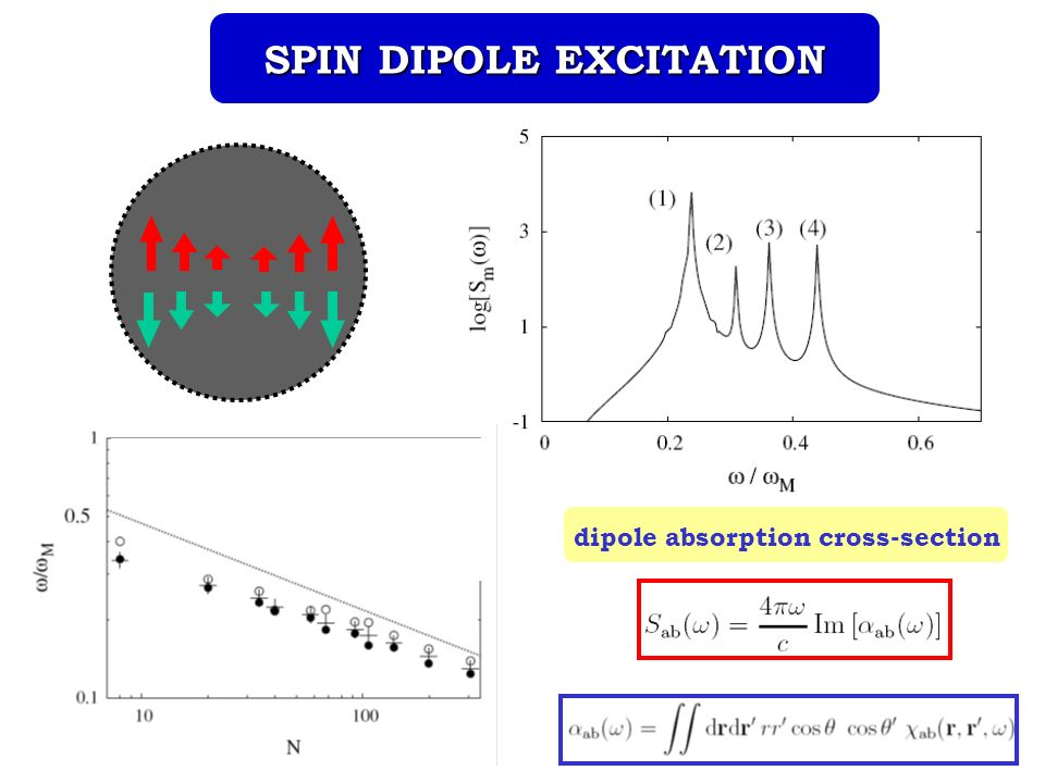 dipole absorption cross-section SPIN DIPOLE EXCITATION