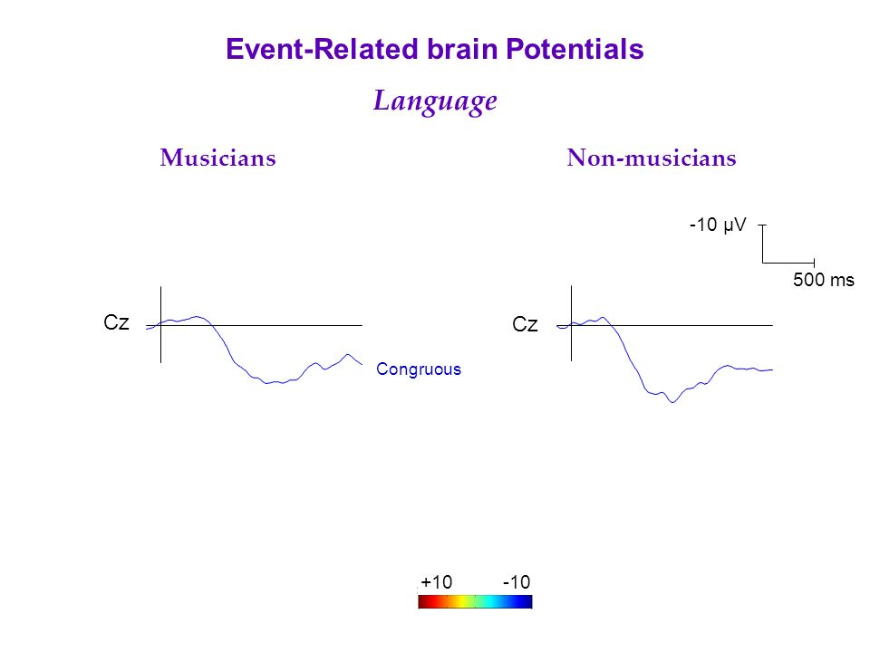 Cz Musicians Non-musicians Event-Related brain Potentials Language Congruous -10 µV 500 ms +10-10