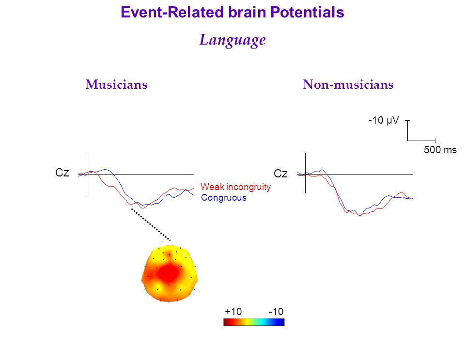 Cz Musicians Non-musicians Event-Related brain Potentials Language Weak incongruity Congruous -10 µV 500 ms +10-10