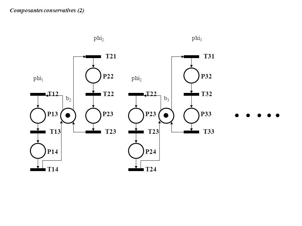P22 T21 T22 P23 T23 T12 P13 P14 T13 T14 phi 1 phi 2 b2b2 Composantes conservatives (2) P32 T31 T32 P33 T33 T22 P23 P24 T23 T24 phi 2 phi 3 b3b3 …..