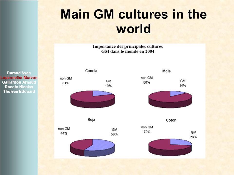 Main GM cultures in the world Durand Sven Lepannetier Morvan Gaillardou Arnaud Racoto Nicolas Thuleau Edouard