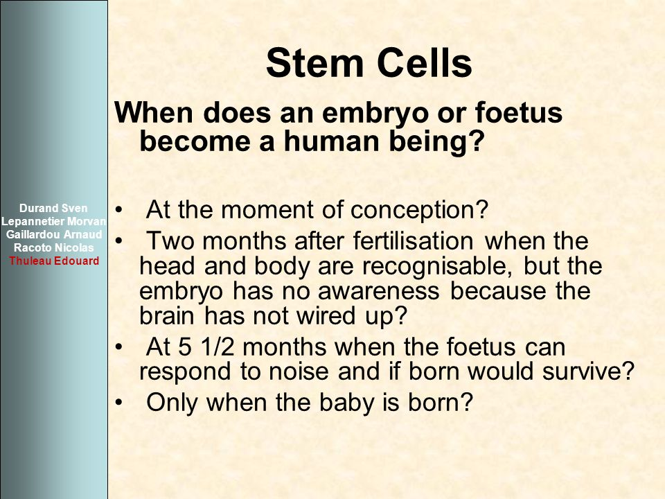 Stem Cells When does an embryo or foetus become a human being? At the moment of conception? Two months after fertilisation when the head and body are