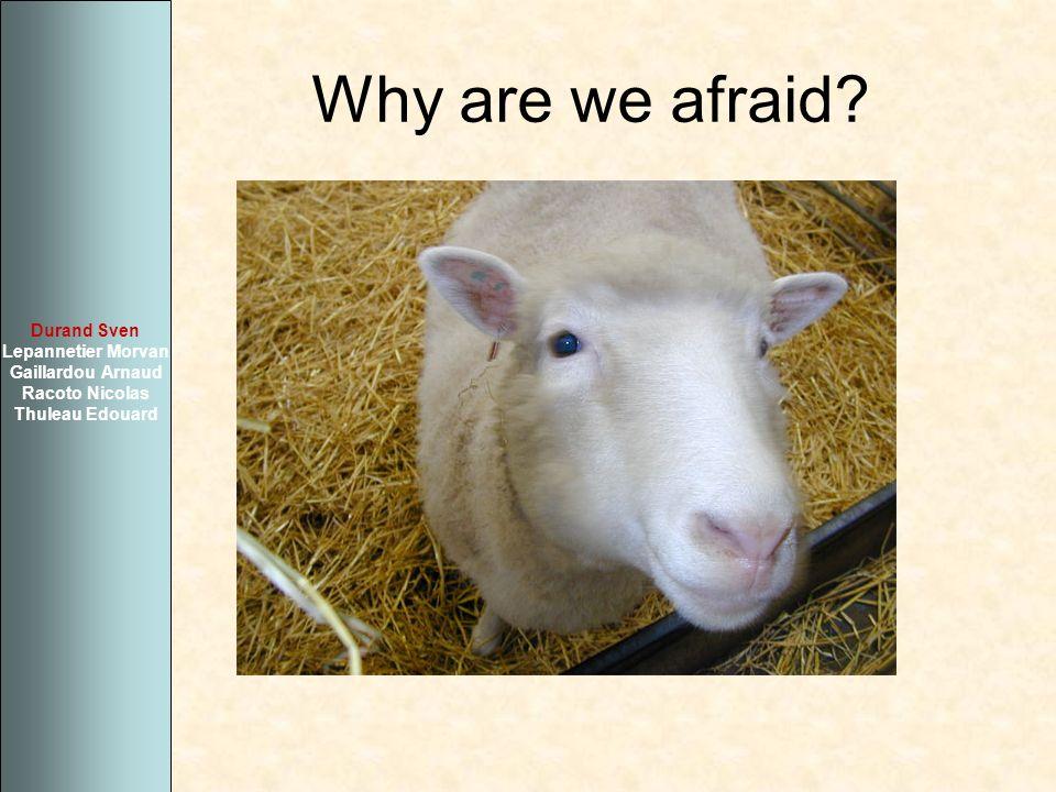 Why are we afraid? Durand Sven Lepannetier Morvan Gaillardou Arnaud Racoto Nicolas Thuleau Edouard