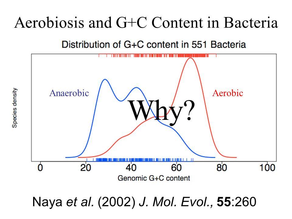 Aerobiosis and G+C Content in Bacteria AerobicAnaerobic Naya et al.