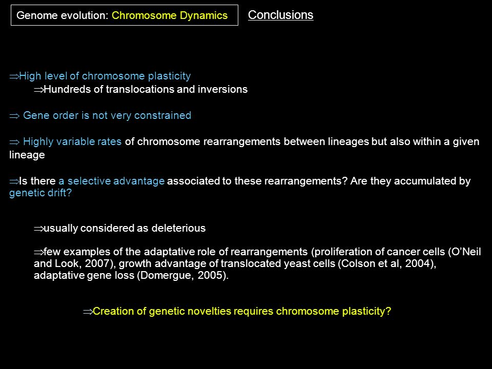 High level of chromosome plasticity Hundreds of translocations and inversions Gene order is not very constrained Highly variable rates of chromosome r