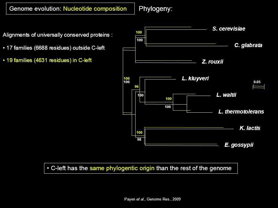 100 98 E. gossypii K. lactis L. thermotolerans L. waltii L. kluyveri Z. rouxii C. glabrata S. cerevisiae 100 96 100 0.05 Payen et al., Genome Res., 20