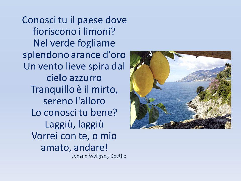 Conosci tu il paese dove fioriscono i limoni? Nel verde fogliame splendono arance d'oro Un vento lieve spira dal cielo azzurro Tranquillo è il mirto,