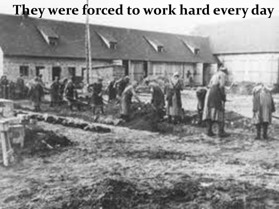 They were forced to work hard every day