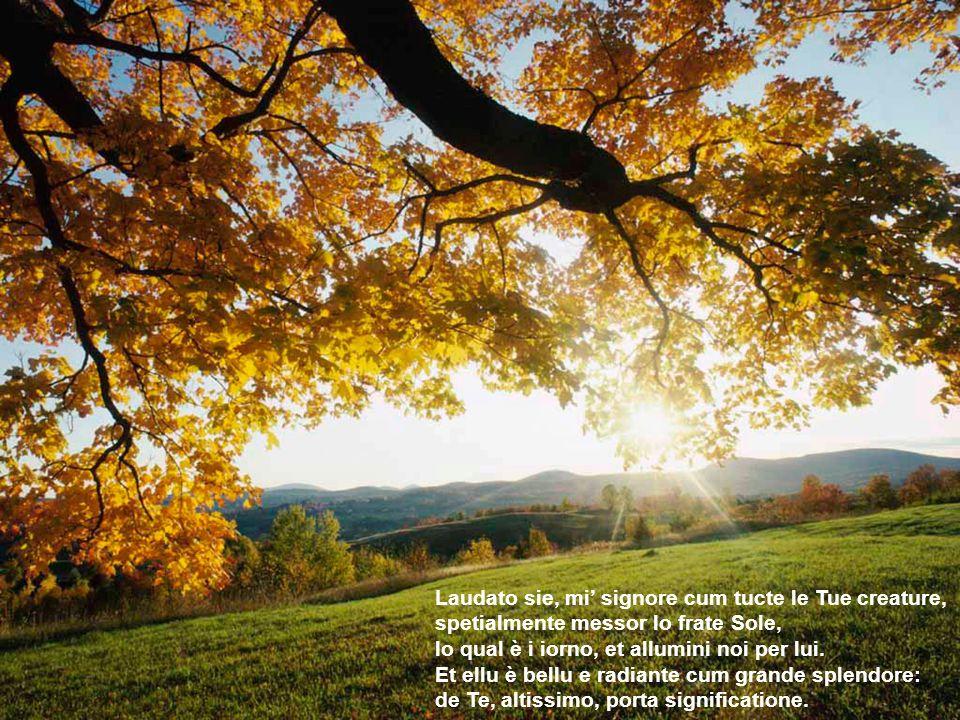 Laudato si, mi Signore, per sora Luna e le stelle: in celu lài formate clarite et pretiose et belle.