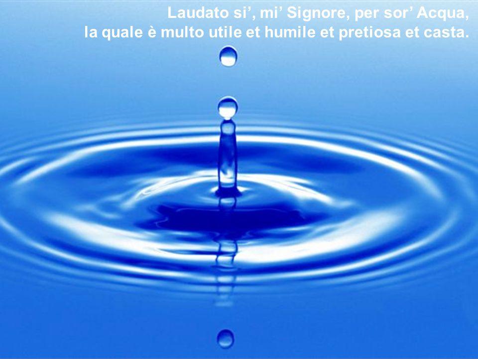 Laudato si, mi Signore, per sor Acqua, la quale è multo utile et humile et pretiosa et casta.