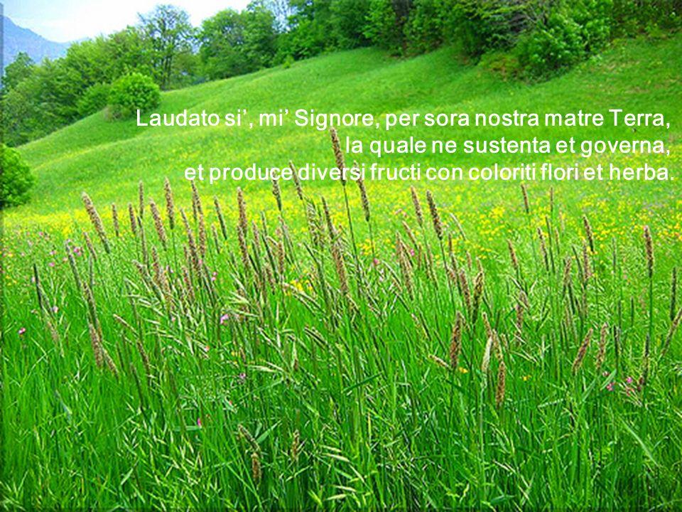 Laudato si, mi Signore, per sora nostra matre Terra, la quale ne sustenta et governa, et produce diversi fructi con coloriti flori et herba.