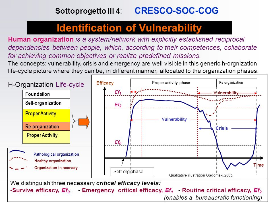 Sottoprogetto III 4: CRESCO-SOC-COG Human organization is a system/network with explicitly established reciprocal dependencies between people, which,