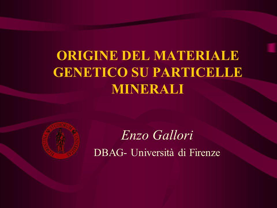 ORIGINE DEL MATERIALE GENETICO SU PARTICELLE MINERALI Enzo Gallori DBAG- Università di Firenze